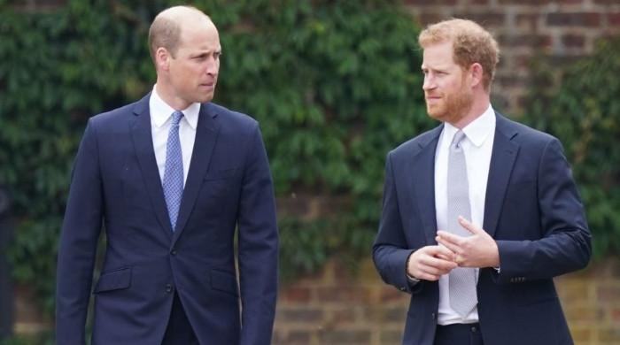 Prince Harry desperate for survival