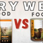Dry Vs. Wet Pet Food – What's The Difference?