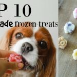 TOP 10 HOMEMADE FROZEN TREATS FOR DOGS